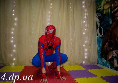 Человек паук и Кошка